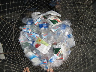 Plastic Bottles to recycle